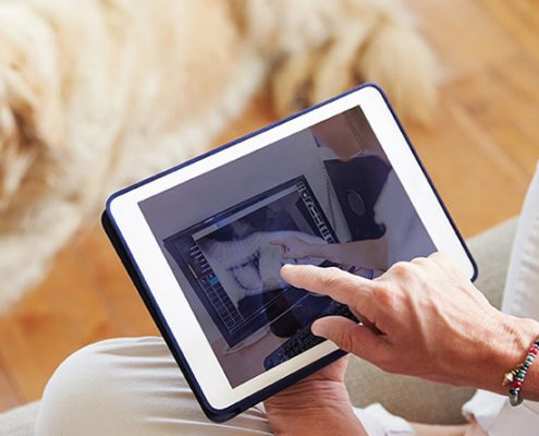 someone using a tablet with a Labrador Retriever in the background